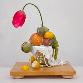 KATHLEEN VOLP - Still life in an Age of Anxiety